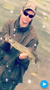 Northern Pike — Maxime Debray