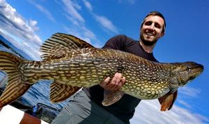 Northern Pike — Cédric Courtois