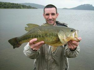 Black Bass (Achigan à Grande Bouche) — Reg Poit