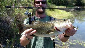 Largemouth Bass — Maxime P