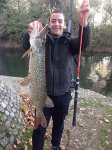 Northern Pike — Guillaume Dumesnil