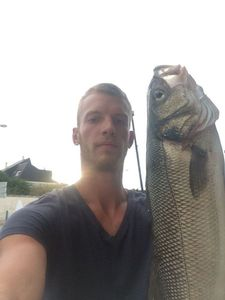 European Bass — Gregoire Hervieu