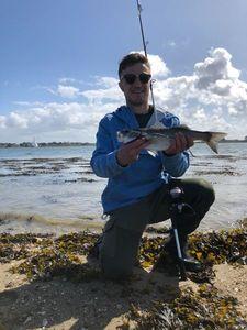 European Bass — Nathan Petit