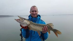Northern Pike — Marc Lecornu