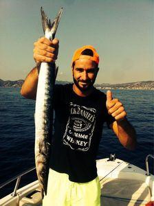 Great Barracuda — Jonathan  Heyse