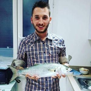 Bluefish — Christophe Medina