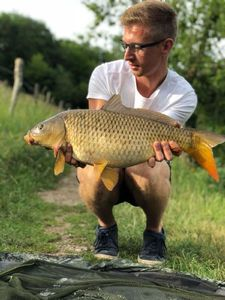 Common Carp — Arthur Demonchaux
