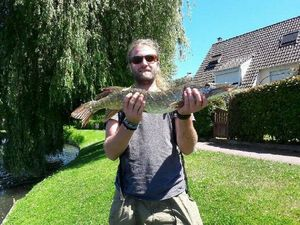 Northern Pike — Maxime P