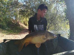 Common Carp — Mathis no-killfishing
