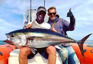 Bluefin Tuna — Raphael Du Merilis