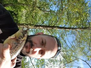 Brown Trout — Yannick Molliere