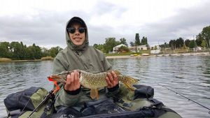 Northern Pike — Louis Rey