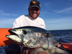 Southern Bluefin Tuna — Christian Cano
