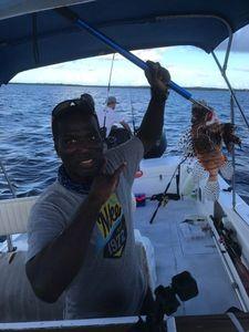 Rascasse volante — Elmondo Fishing