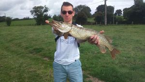 Northern Pike — Clément Scelle