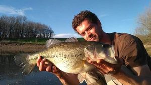 Largemouth Bass — Jonathan Nouri