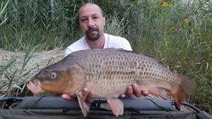 Common Carp — Johnny Chichery