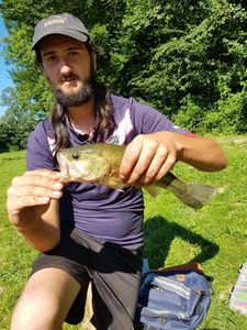 Largemouth Bass — Sébastien Coilier