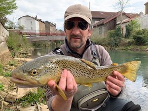 Brown Trout — Yannick JOUAN, WFFT
