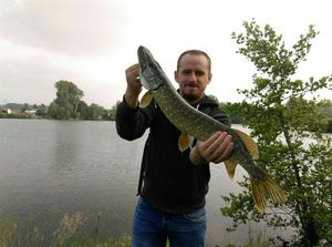 Northern Pike — Axel Lucie
