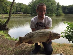 Common Carp — Joris Bourland