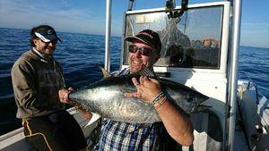 Bluefin Tuna — Jean-paul Jacquet