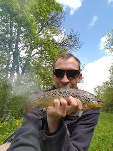 Brown Trout — Mathieu Gaujard