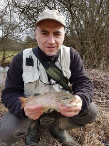 Brown Trout — Tof Tofder