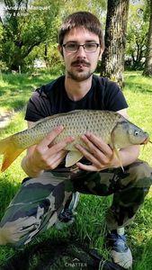 Common Carp — Qkentin Guillory