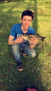 Largemouth Bass — Duncan Bourseau