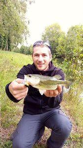 Smallmouth Bass — Florian Drnd
