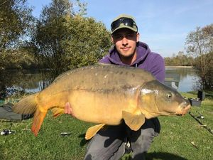 Mirror Carp — Anthonin Coudiere