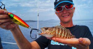 Comber — Sebcricri Fishing