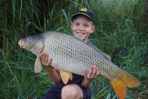 Common Carp — Mathys Muller