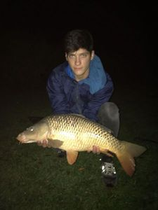 Triggerfish — Rudy Fcporto