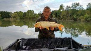 Koï Fish — Jean-Sébastien  Picard