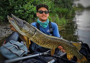 Northern Pike — Anthony  Maiorana