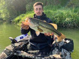 Largemouth Bass — Aymerik Palermo
