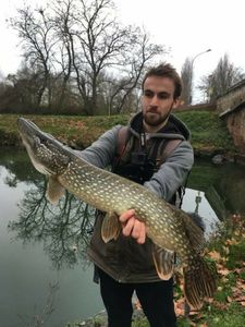 Northern Pike — Victor Damin (CarcaFishing)