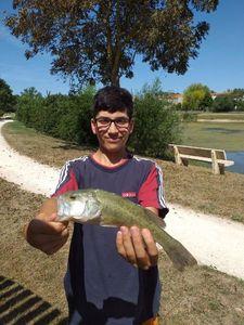 Largemouth Bass — Ylian F&G