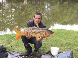 Common Carp — Romain Letetrel
