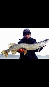 Northern Pike — Fisher Price