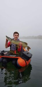 Northern Pike — Ollivier Remy