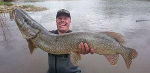 Northern Pike — Sebcricri Fishing