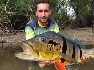 Peacock Bass (Tucunaré Temensis) — Jean-Rémy Bost
