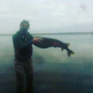 Northern Pike — Vincent Julien