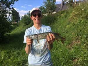 Northern Pike — Alexis Alliot
