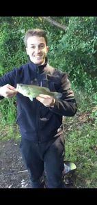 Smallmouth Bass — Thomas Puissegur