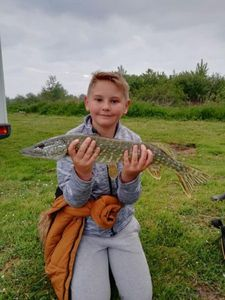 Northern Pike — Théo Brailly