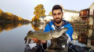 Northern Pike — Fabrice Lecointe